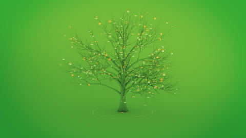 Digital Nature Tree CG動画素材