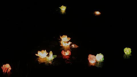 Lanterns on water at night Footage
