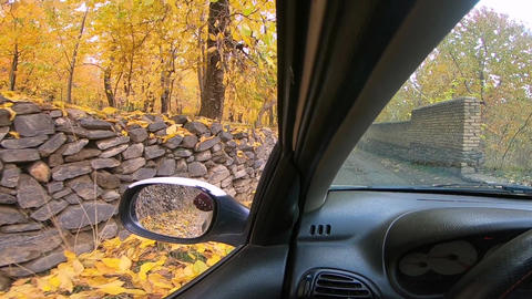 Driving in autumn Road Archivo