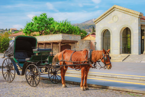 the horse harnessed in the carriage on the street of the small southern town Photo