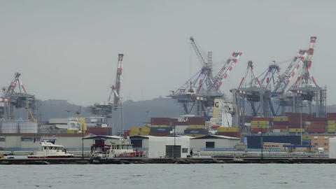 Cranes transferring containers for vessel loading in industrial port, shipping Live Action