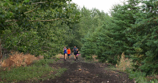 Front view of fit Mixed-race people jogging on a pathway at forest 4k Live Action