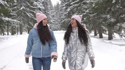Two girlfriends walk in the woods in the winter having a good mood Footage