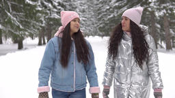 Two girlfriends walk in the woods in the winter with a good mood. slow motion Hd Footage