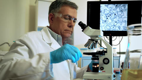 virologist studying mosquito larvae to cure the zika virus Stock Video Footage