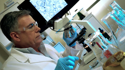 virologist looking for cure to zika virus Footage