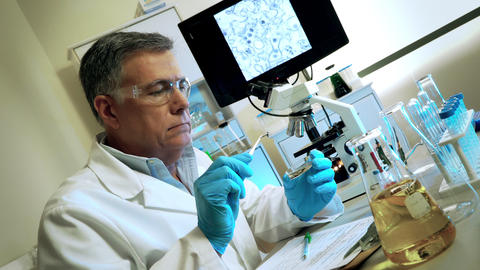 virologist looking at mosquito larve to study the zika virus Stock Video Footage