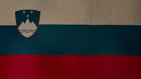 Flag Slovenia 01 ライブ動画