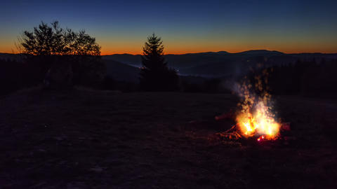 Outdoor wood campfire burning brightly Stock Video Footage