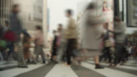 タイムラプス - 渋谷のスクランブル交差点を歩く人々 2018年 秋 GIF