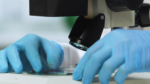 Female scientist doing biochemical analysis of blood, genetic testing, closeup Footage