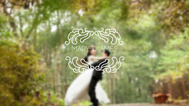 Premium Wedding Titles After Effect Template V20 After Effectsテンプレート