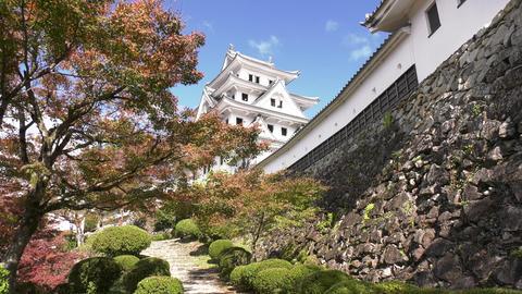 gujyo hachiman castle ビデオ
