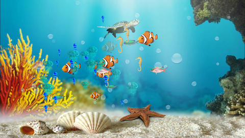 UNDERWATER WORLD Animation