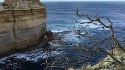 Razorback viewpoint at Great Ocean Road Live Action