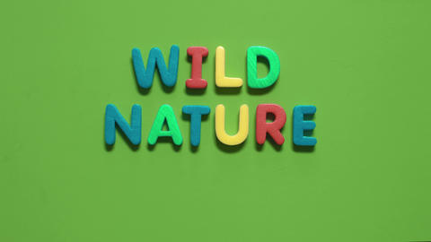 Lettering-Wild Nature stock footage
