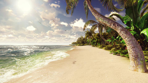 Palm trees on a tropical island with blue ocean and white beach on a Sunny day. Animation