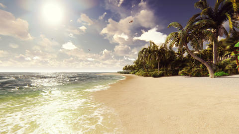 Palm trees on a tropical island with blue ocean and white…, Stock Animation