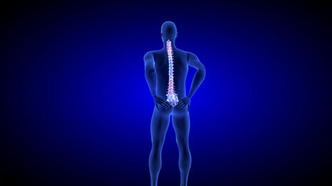 Spine Pain. Blue Human Anatomy Body 3D scan render on blue background Live Action