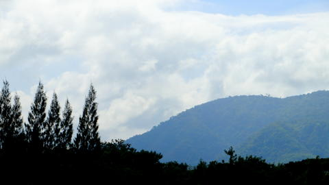 Pictures of tree silhouette cut with mountain ridges Khao Yai National Park フォト