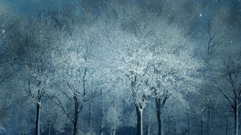 Winter Scenery Animation