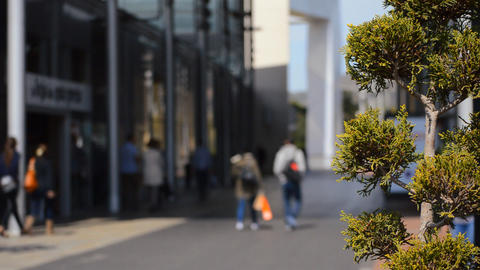 Shoppers Go By the Little Tree At The Shopping Mall GIF