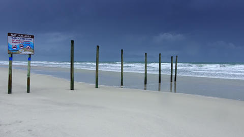 Daytona beach - absolutely empty Live Action