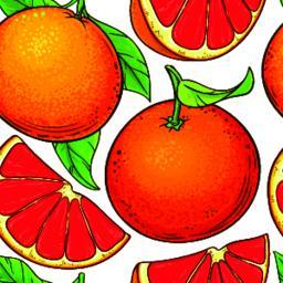 grapefruit fruits vector pattern ベクター