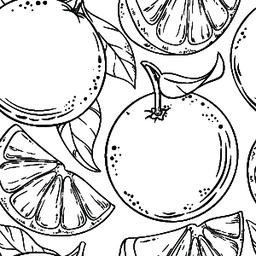 orange fruit vector pattern ベクター