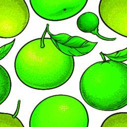 green mandarin fruit vector pattern ベクター
