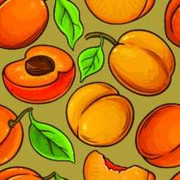 Apricot fruit vector pattern-01 ベクター
