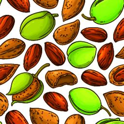 almond nuts vector pattern ベクター