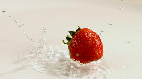 Strawberry falling on water against white background 4k Live Action