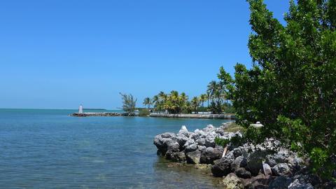 Beautiflul bay in the Florida Keys Footage