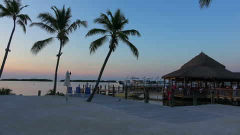 The beautiful Florida Keys at sunset Live Action