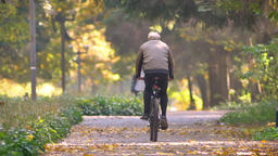 Slow-motion video of gray headed man riding on bike in autumnal park Archivo