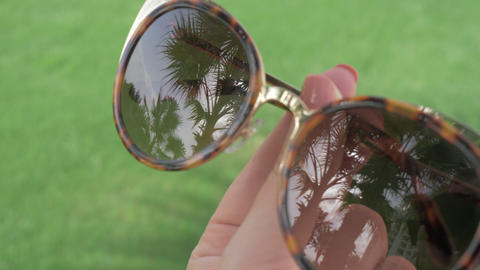 A closeup of female sunglasses reflecting palm trees GIF