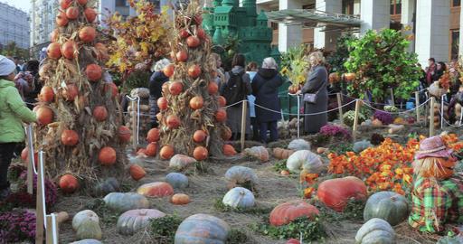 """Street autumn gastronomic festival """"Golden Autumn"""" Live Action"""