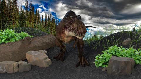 Tyrannosaurus Rex Animation