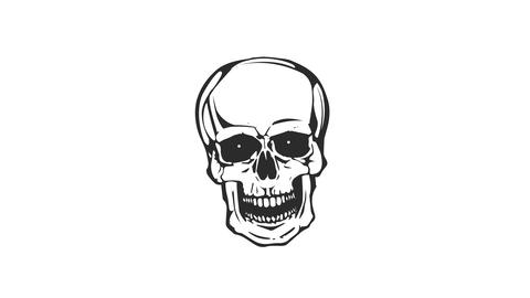 Dead Skull Head Laughing Loop Stock Video Footage