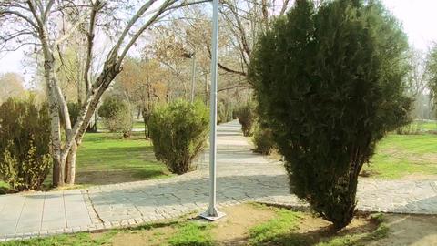 Autumn Park GIF