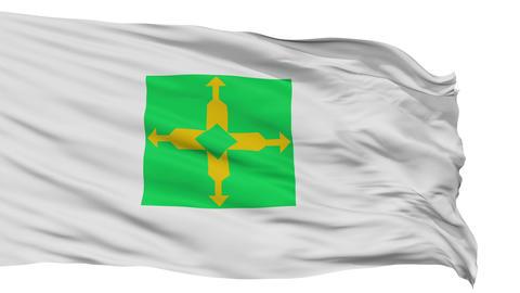 Brasilia City Isolated Waving Flag Animation