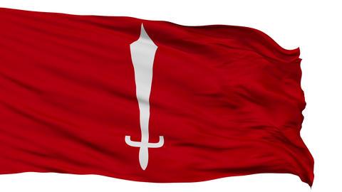 Kathmandu City Isolated Waving Flag Animation