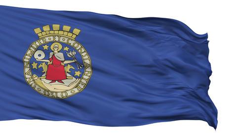 Oslo City Isolated Waving Flag Animation