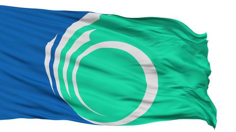 Ottawa City Isolated Waving Flag Animation