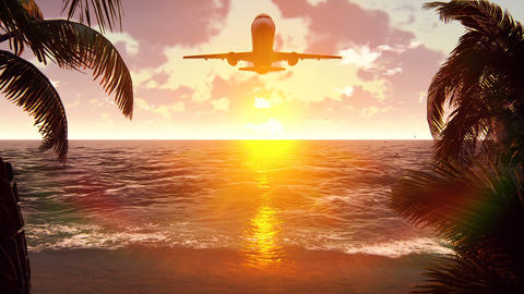 The plane flies over a tropical island on the background of a beautiful sunset Videos animados