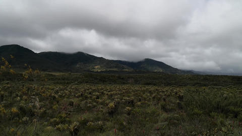 Paramo in the Andean mountains of the Purace National Park in Colombia Footage
