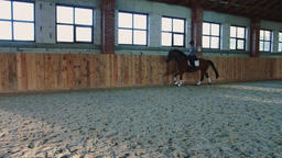 View of woman training with horse while riding fast on sandy spacious arena ビデオ