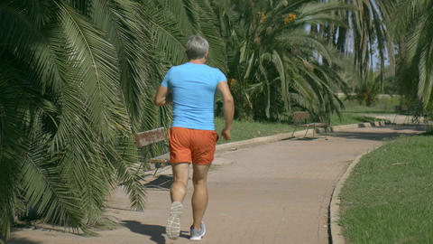 Athletic man in blue tshirt runnings along the tropical park pathway Archivo