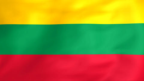 Flag Of Lithuania Stock Video Footage